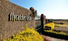Flycatcher Castle Deal of the Day South Africa, Castle, Sad, Night, Castles