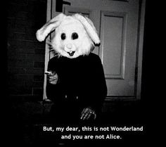 you are not Alice