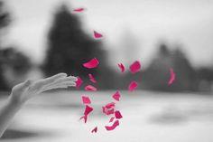 Mensagem de aniversário - we heart it noir blanc modifi1