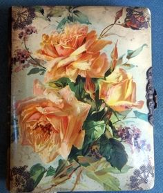 Victorian Celluloid Velvet Photo Albums | eBay Victorian Photos, Antique Photos, Vintage Photos, Prayers Of Encouragement, Catherine Klein, Vintage Photo Album, China Painting, Scrapbook Albums, China Porcelain