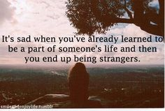 Its sad when youve already learned to be a part of someones life and then you end up being strangers friendship quote