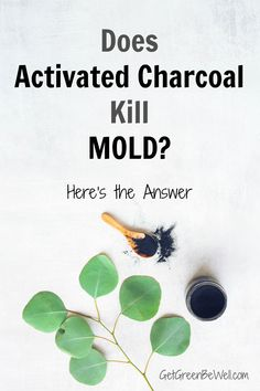 Can mold be killed with activated charcoal? Here's the surprising answer! Dog Cleaning, Cleaning Recipes, Green Cleaning, Cleaning Hacks, Natural Disinfectant, Toilet Brushes And Holders, Get Rid Of Mold, Floors And More, Clean Washing Machine