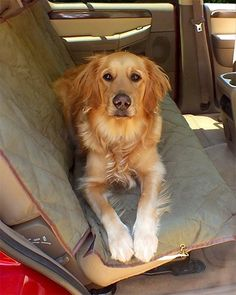 (Image Courtesy of Amazon) Your dog will love this. Great dog car seat cover that protects your car. Pet Car Seat Covers, Dog Seat, Dog Car Seats, Dog Car Accessories, Leather Car Seats, Dog Safety, Dog Paws, Dog Design, Best Dogs