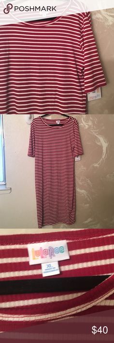 Red and white ribbed Julia LuLuRoe NWT Really cute red and white ribbed Julia. Never worn still with tags  I just bought the wrong size :( LuLaRoe Dresses