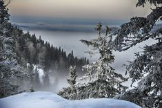 Talven ihmemaa #Koli #Lieksa #Finland #WinterWonderland #landscapes #SnowHour #nature #NationalParks #ThisIsFinland #visitfinland #VisitKarelia #photoby Kirsi Tolvanen - Satu Karlin (@KarlinSatu) | Twitter