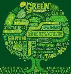 Eco - Vocabulary