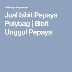 Jual bibit Pepaya Polybag | Bibit Unggul Pepaya