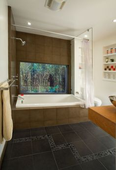 I would seriously donate a kidney to have a beautiful aquarium bathroom! I'd never leave the bath tub! It's looks so amazingly relaxing...