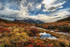 """Patagonia Alive.  """"While walking across this open field in the Andes, I stopped countless times to open up my tripod. I'd only walk a short distance before looking around again and seeing everything anew.""""  by Trey Ratcliff."""