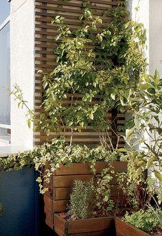 A paisagista Drica Diogo mudou a cara de um canto de 5,50 m² na cobertura. A inspiração veio dos jardins dos prédios de Paris. Acomodou vasos numa treliça, alguns com temperos como alecrim, hortelã e manjericão