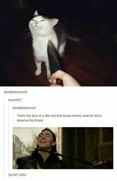 Please don't hurt the little kitty (and im talking about loki fyi)