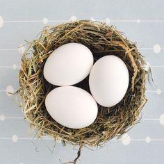 """Haltet Ihr noch ein bisschen Symbolik aus? Zu unserem Oster- wahlweise Babyglück fehlt uns nämlich noch das NESTERL! Das Projekt habe ich für Mein schönes Land hervorgekramt, wo die NATURKINDER Seite diese Woche als Lieblingsblog vorgestellt wurde. Es ist ursprünglich aus dem zweiten NATURKINDER Buch """"Feiern mit den NATURKINDERN"""". Dort, im Kapitel """"Vogelhochzeit"""" hat die Nestbau-Thematik wunderbar reingepasst Wir wollten..."""