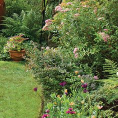 Get more planting space by shrinking your turf. 6 tips from a Northwest garden