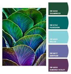 Paint colors from Chip It! by Sherwin-Williams nice palette Palettes Color, Colour Pallette, Color Palate, Colour Schemes, Color Patterns, Color Combinations, Peacock Color Scheme, Paint Palettes, Peacock Paint Colors