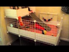 ▶ How i built Guinea Pig 2x3 C&C cage with stand and loft - YouTube