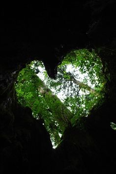 Natural heart shape, love nature!!!!