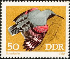 Wallcreeper stamps - mainly images - gallery format