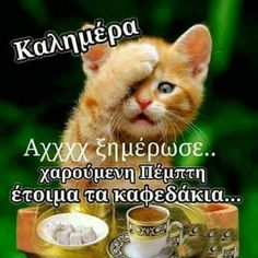 Good Night, Good Morning, Tomorrow Is Monday, Greek Quotes, Picture Quotes, Thankful, Messages, Anastasia, Pink Roses
