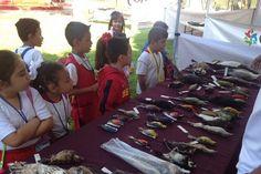 El subdirector de Planeación del CECTI, Alejandro Martínez Fuentes, en representación de la directora general, Esther García Garibay, destacó que en Michoacán, con motivo de la 22ª SNCyT, se llevaron ...