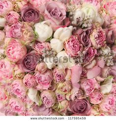wedding bouquet with rose bush, Ranunculus asiaticus as a background by Julie Boro, via Shutterstock
