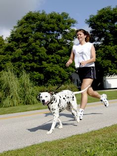Are you making #exercise a daily part of your pup's routine? We hope so! Check out how. #pets