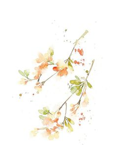 花草、水墨、封面、淡雅、唯美、插画、古风
