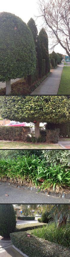 Gardener Sends Photos Of Himself At Work...