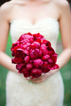 Red peonies bouquet