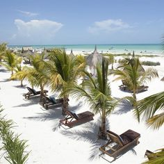 The Beach Escape: CasaSandra on Isla Holbox, Mexico. A sandpit island bolthole, offering sexy rooms with sea views and hammocks, double loungers around the pool, seriously stylish décor, and super fresh Cuban-Mexican seafood.