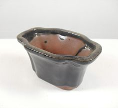 small mame bonsai tree pot for tiny bonsai or small plants
