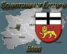 Autoentsorgen durch Schrottankauf Exclusiv in Bonn, sowie ganz NRW und darüber hinaus!