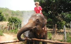 Our Elephant Adventure in Thailand - Cheeky elephant soaking Laura!