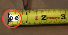 Alright, usually these are cheesy and obvious, but there were a couple of tips about a tape measure I had no idea about and is super useful!