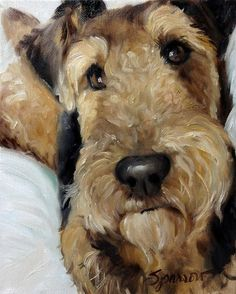 Airedale Portrait - probably in oils.  The Eyes Are Windows to the Soul