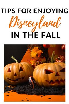 Things to Love about Disneyland in the Fall!