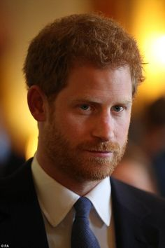 Prince Harry listens as he chats to guests at a reception celebrating 40 years of the char...