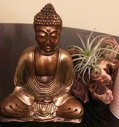 Hast du heute schon meditiert?