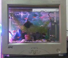 Diy fishtank frame #recycle