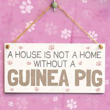 A House Is Not A Home Without A Guinea Pig - Cute Small Gift Sign For Pet Owners