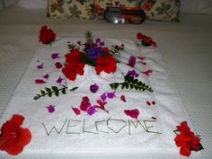 OCR welcome to our home flowers. We're so happy to have you!