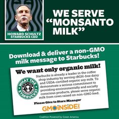 We're stirring up a social media storm on October 5th! Our social media blitz will call on Starbucks to serve organic milk via Facebook, Twitter, and Instagram. Stand with us and ask Starbucks for #OrganicMilkNext! More information here: http://gmoinside.org/starbucks-national-day-action-organicmilknext #GMOs #GMODairy #organic #goorganic #cleaneats #WTStarbucks