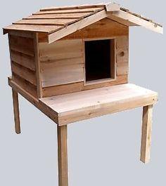 Insulated Outdoor Cat House with Lounging Deck and Extended Roof * Special cat product just for you. : Cat Tree and Tower Feral Cat Shelter, Feral Cat House, Big House Cats, Outdoor Cat Shelter, Outdoor Cats, Feral Cats, Cat House Outdoor, Kitty House, Hamster House