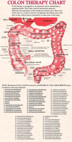 Colon Cleansing Colon Therapy Chart used by professionals showing anatomy of the colon, corresponding body parts, and cell salts. Colon Cleanse Diet, Colon Detox, Natural Colon Cleanse, Smoothie Cleanse, Body Cleanse, Health And Nutrition, Health Tips, Health And Wellness, Health Benefits