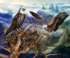 Spirit Of The Wild - Birds Of Prey - The Eagles Nest by Carol Cavalaris.The eagle's nest, so strong and so high, they sit and wait for their prey to come by. This painting is from the 'Spirit Of The Wild' series of art by Carol Cavalaris. The Eagles, Bald Eagles, Eagle Nest, Creation Photo, Beautiful Owl, 5d Diamond Painting, Cross Paintings, Cute Birds, Birds Of Prey