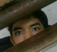 My pal's eyes