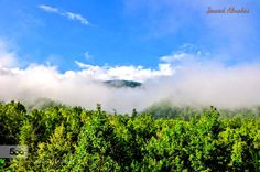 Landscape from Gatlinburg Tennessee 11/8/15 by jalmohri  Gatlinburg Tennessee TN Usa beautiful clouds fog forest green landscape landscapes scenery scenes sk