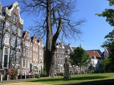 How to see Amsterdam on a budget. Guide to free and value things to see and do in Amsterdam. Amsterdam Things To Do In, Visit Amsterdam, Amsterdam Travel, Dutch Netherlands, Amsterdam Netherlands, Liberal Views, Rhine River Cruise, Amsterdam City Guide, Red Light District