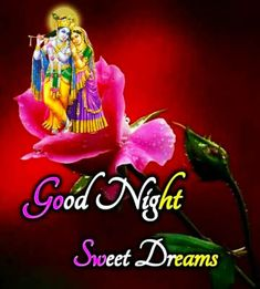 Good Night Thoughts, Good Night To You, Beautiful Good Night Images, Good Night Prayer, Cute Good Night, Good Night Friends, Good Night Blessings, Good Night Sweet Dreams, Good Night Quotes
