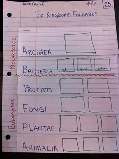 Garner 6th Grade Science Blog: SIx Kingdoms Foldable