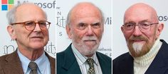 Three scientists on Tuesday won a Nobel Physics Prize for their roles in detecting faint ripples flying through the universe — gravitational waves predicted a century ago by Albert Einstein that provide a new understanding of the universe. Nobel Prize In Physics, Nobel Peace Prize, Gravity Waves, International News Headlines, Gravitational Waves, Planetary Science, Massachusetts Institute Of Technology, Physicist, Stockholm